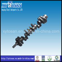 Auto Part Crankshaft for Nissan Tb48 Engine